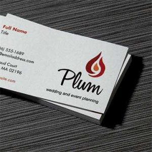 Vistaprint Business Card Dimensions Business Card Website